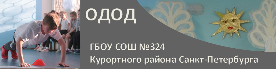 ОДОД ГБОУ СОШ №324 Курортного района Санкт-Петербурга
